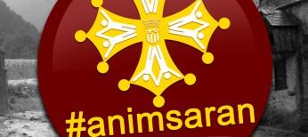 CiU pide un IVA superreducido para los afectados por las inundaciones de Aran, alto Pirineo catalán y oscense
